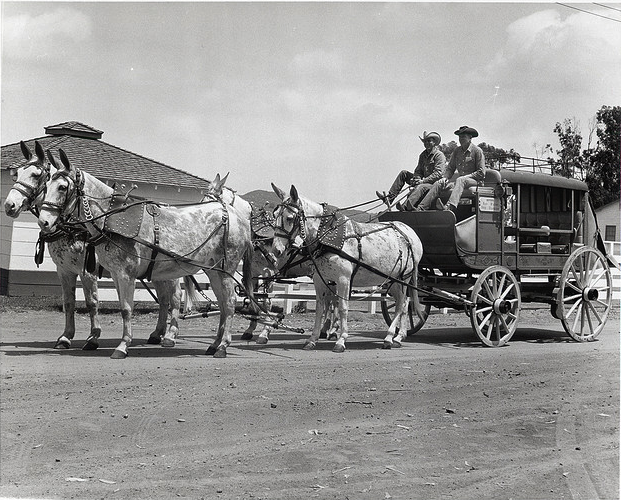 CVD Stagecoach Race